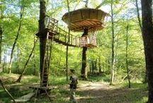 Treehouses / by micaela delagarde