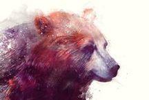 Bears / by Hanna Hine