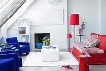 Red White and Blues  / by david bromstad