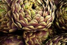 ::natural textures & patterns::