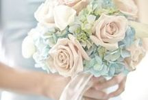 ❤ Pastel Passion ❤ / ♥ so delicate...so pretty ♥ / by Debbie Orcutt