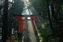Japan Travel / places to go and things to see