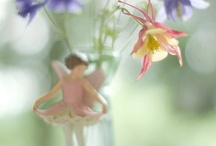 ZZ...Fairies (Closed) / and gnomes and elves and such.... No New Pins. Moving on To More Fairies Board  / by Tina V