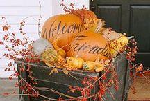 Autumn / by Pamela Frechette