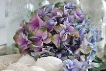 Fabulous Floral Arrangements / floral arrangement ideas