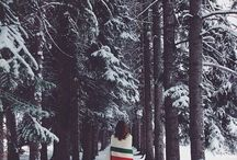 WINTER is coming.... / it is beginning to look a lot like christmas / by Michelle Madison