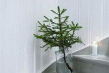 Christmas / Holiday Decor / by Stephanie Ward