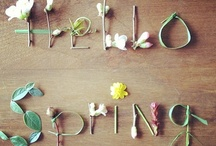 SPRING into action / by Michelle Madison