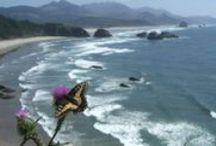 go: pacific northwest / by Sarah Sorensen