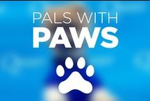 Pals With Paws / Furry, fuzzy, four-legged friends.