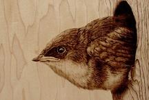 nest / by m gislason