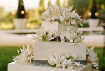 wedding cake / by Yehudit Steinberg M.Ed.