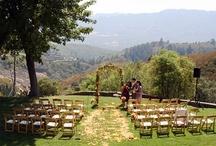 Intimate Weddings / by Yehudit Steinberg M.Ed.