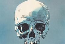 Skulls / by FatLip 76