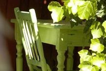 Green Green / by Cindy Remacle