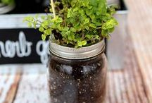 Mason Jars / Filled with creativity... Find crafty Mason jar project ideas for nearly every occasion. / by Michaels Stores