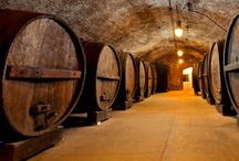 Wine in NY / Wine, Wineries, Wine tours, Wine tastings - oh! NY You're so talented with vineyards, you should be blushing! / by I Pin NY State