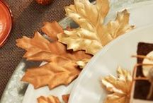 Fall Decorating / Fall Ideas that are ready for harvest (lol). Check out DIY décor projects inspired by the season, and recipes that are perfect for cooler weather. Plus, find suggestions for Thanksgiving cooking, decorating and entertaining.