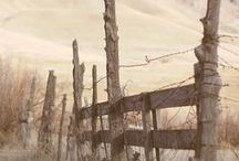Fences / by Cindy Remacle