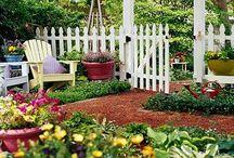 Gardening / by Chandel Reed