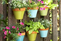Outdoor Decor, Tips, and More! / Get more from the outdoors by decorating your patio and garden with these crafty ideas!