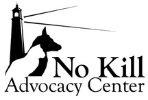 NO KILL ANIMAL SHELTERS / Movement to make ALL SHELTERS NO KILL -  SAVE LIVES  / by Anne Reade