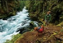 Day Hiking / Lightweight hiking boots, daypacks and poles! Grab a pal, your favorite gear and hit the trail. / by REI