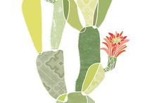 CACTI / Cactus inspiration