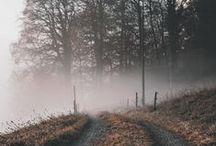 Autumn / Autumn inspired images