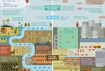 Awesome Infographics About Food / Awesome Infographics About Food from Food Tank: The Food Think Tank (www.FoodTank.org)  / by Danielle Nierenberg, Food Tank