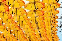 Mellow Yellow / I love yellow