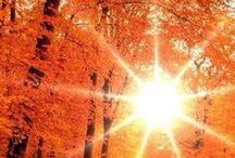 Autumn & Thanksgiving / by Lois Ann Hall