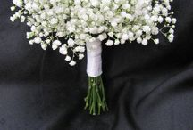 Bridal Boquets / by Tiffany Holgate