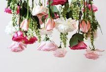 Florals / flowers speak their own language