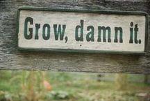 Grow Damn It!! / by Kayla Nelson