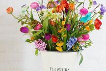 Flowers / Gardens, wreaths, bouquets