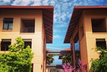 Favorite Places & Spaces / by Stanford Graduate School of Business