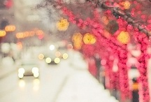Making Merry / by Sandra Kellim
