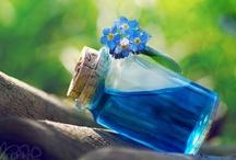 Blue & Green  / by Lisa Buchinski