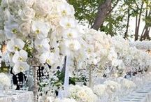 Luxe Wedding Style / Luxury wedding ideas. luxe weddings, luxury weddings, high end weddings,