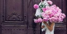 Pick Your Blooms / Weddings, flower types, flower recipes, wedding flowers, flower colors