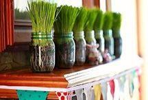 Mason Jar Manic / The jar among jars.