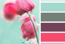 palette / by Stephanie Schaubroeck