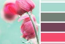 palette / by Stephanie Schaubroeck