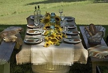 Table Settings in the Outdoors, and Picnics in all Seasons / Al fresco dining is one of life's great pleasures, all the more so because it is infrequent. Also food platter and presentations that go well outdoors. / by Becky Johns