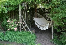 Exterior Extravaganza / by Christie Walsh-Myers