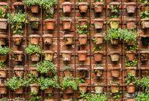 "Le Jardin / ""To plant a garden is to believe in tomorrow"" -Audrey Hepburn"