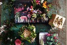 Avant Garden Collection   Fall 2014 / by IGIGI