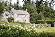 | Villas For Your Pooch |