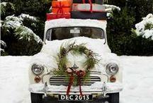 Christmas Season / by mol-illustrate